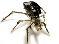 ANTIQUE ROBOTIC SPIDER TITLED SINGER INSECT BY ARTIST CHRISTOPHER CONTE